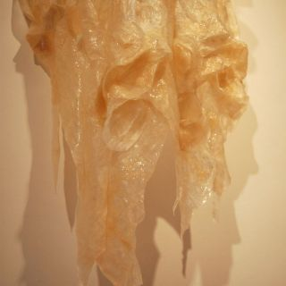 "image:  Title: ""Unfolding"" wall flesh sculpture, (detail) 3' x 2.5' x 5', 2011"